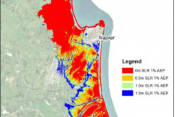 Sea level rise map NIWA report