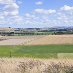 Irrigation in Papanui