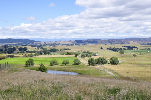 Papanui20catchment20and20farm20dam20100114
