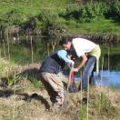 Karamu stream community planting Copy