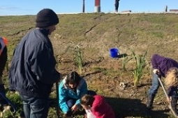 Volunteers planting at the Waitangi star compass May 2017 Copy